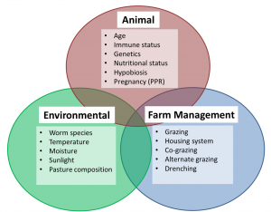 Factors which affect parasite infection in livestock