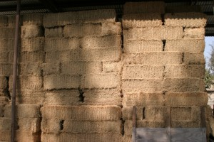 stacked hay in a barn