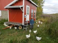 Poultry farmer