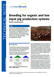 Find out more about pig breeding from the LowInputBreeds project